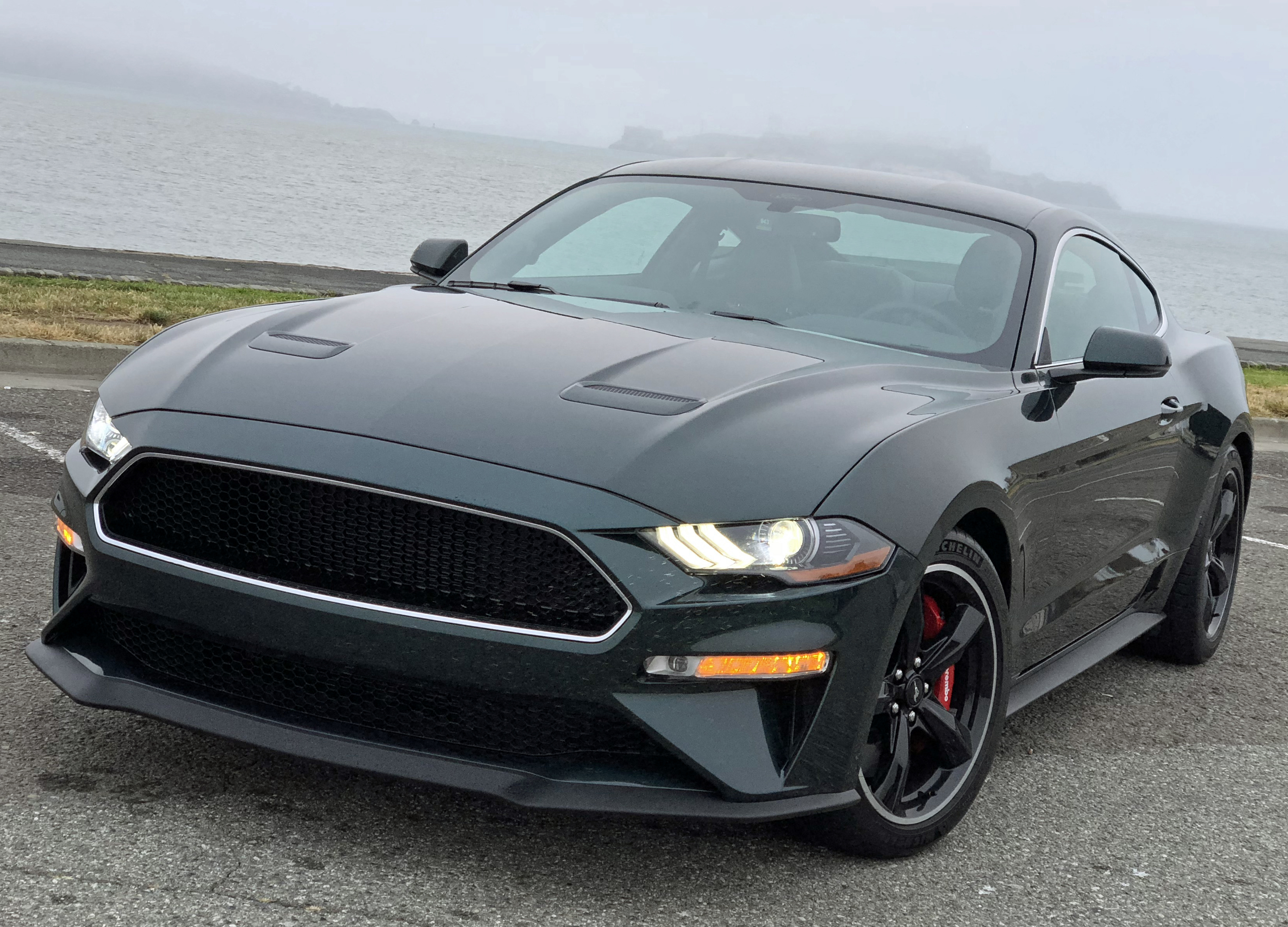 2019 ford mustang bullitt the king of cool in car form karl on cars. Black Bedroom Furniture Sets. Home Design Ideas
